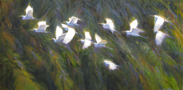 Sandy Nelson - Evening Flight border=