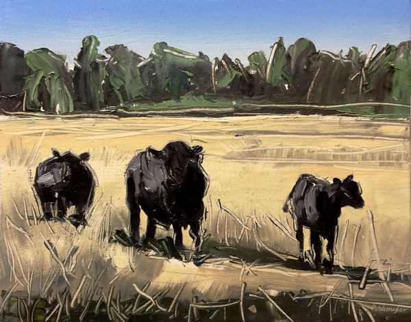 David Shingler - Grazing Cows border=