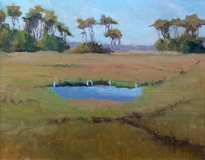 Suzanne Morris - Marsh With Snowy Egrets