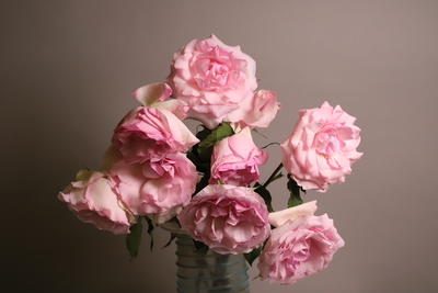 Title: Pink Roses 1/10 , Size: 17 x 22 , Medium: photograph , Price: $350