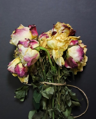 Title: Tied Roses 1/10 , Size: 15 x 10 , Medium: photo , Price: $300