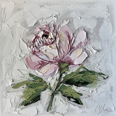 Title: French Peony I , Size: 12x12 , Medium: Oil on Canvas , Price: $400